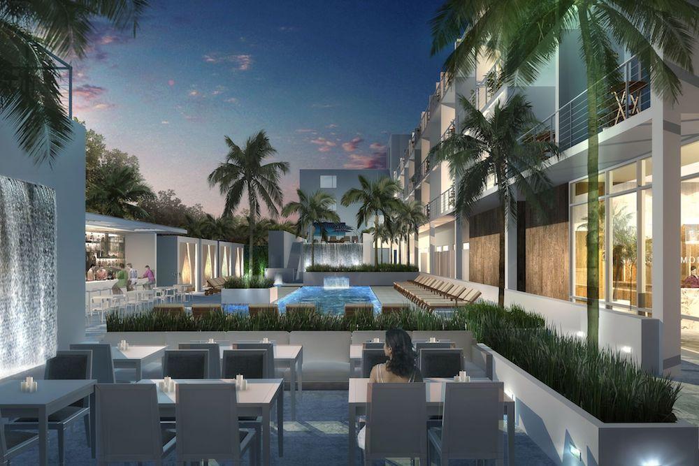 The Rumors Are True - The Sarasota Modern, A Tribute Portfolio Hotel ...